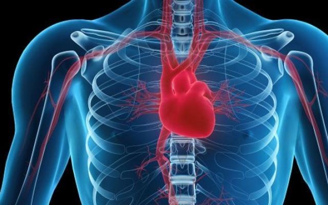 megnagyobbodott szív és magas vérnyomás